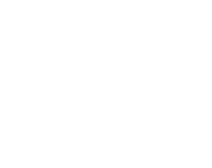 Leslie A. Soley Attorney at Law white Logo